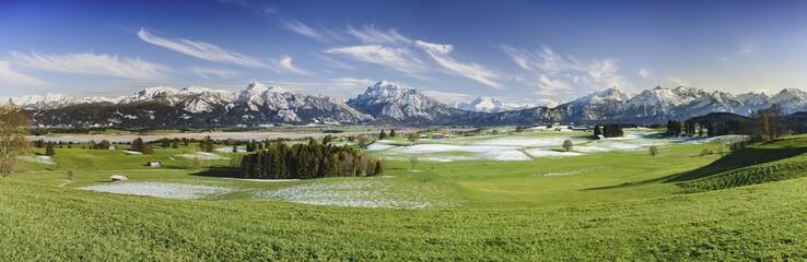 Wall Mural - Panorama Landschaft mit Blumenwiesen im Frühling im Allgäu bei Füssen