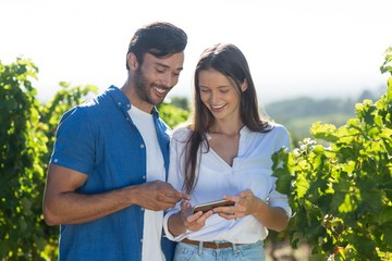 Happy young couple using mobile phone at vineyard
