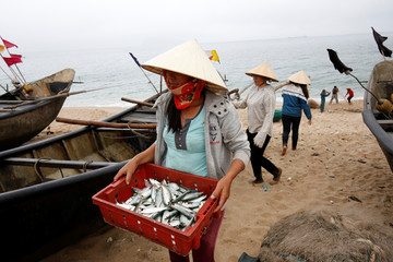 A woman carries fish on the beach of Dong Yen fishing village in Vietnam's central Ha Tinh province