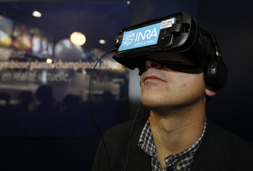 A visitor uses a virtual reality device with the INRA logo at the International Agricultural Show in Paris