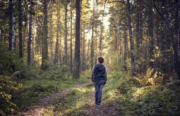 Caucasian boy wandering in forest