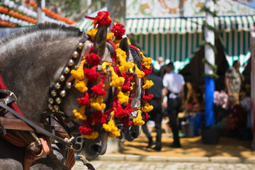 Horses decorated at Spanish parties
