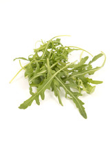 Green fresh rucola