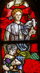 Peace Woman Child Dove Stained Glass Window De Krijtberg Church Amsterdam Netherlands