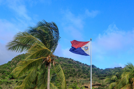 St. Maarten flag with palm tree