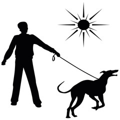 Greyhound. Vector black silhouette on a white background. Illustration of dog breeds