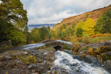 Amazing view of brook and little bridge with the trees and mountains around