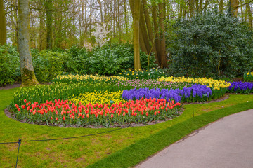 Tuilps and other flowers in Keukenhof park, Lisse, Holland, Netherlands.