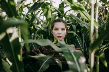 Caucasian woman standing in tall corn field