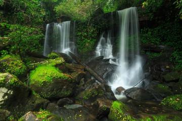 Beautiful waterfall in green forest in jungle.