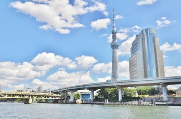 Tokyo Skytree and Sumida Ward Office building located on the east bank of the Sumida River in Sumida, Tokyo, Japan.