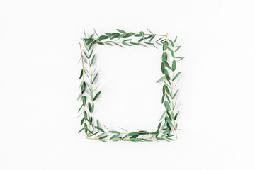 Eucalyptus on white background. Frame made of eucalyptus branches. Flat lay, top view