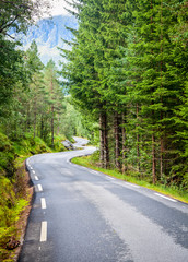 Scenic winding road through fir forest in Norway