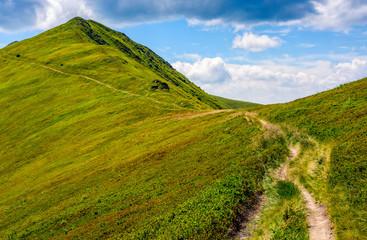 path through a meadow to mountain peak