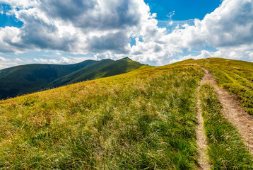 path through a meadow to mountain peak