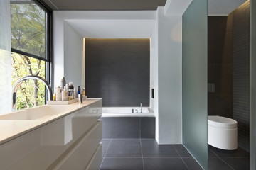 Contemporary bathroom with bath and commode