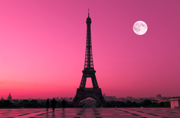 Eiffel Tower in Paris at Dawn, France Wall mural
