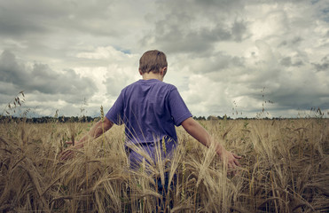 Caucasian boy walking in field of wheat