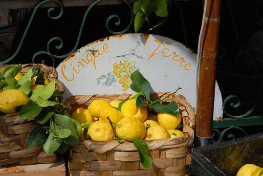 Cinque Terre Lemons