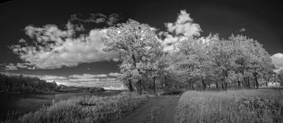 Landscape in infrared light
