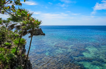 Roatan island Honduras. Landscape, seascape of a tropical blue turquoise clear ocean water, reef. Blue sky in the background. Green palms on the reef rock.