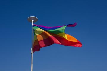 Rainbow flag symbol waving on wind.