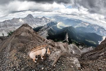 Rocky Mountain Hiking