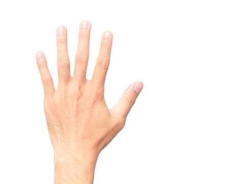 Man showing back hand and five finger count on white background