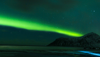 Aurora Borealis Known as Northern Lights Playing with Vivid Colors Over Lofoten Islands in Norway.
