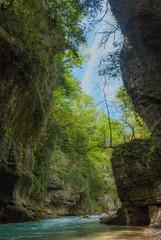 Martvili Canyon II