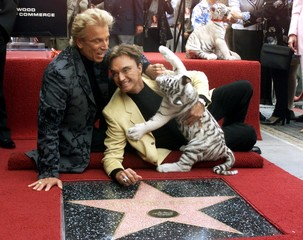 Siegfried (L) and Roy, illusionists who feature rare white tigers in their Las Vegas act, pose with ..