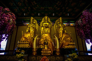 Lion statue and buddha state on chinese temple in Thailand