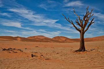 Hidden Vlei, Sossus Dunes, Namibia