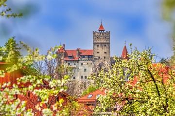 Wall Mural - Bran castle in spring season, Brasov landmark, Transylvania, Romania.