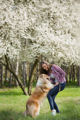 Young beautiful woman with long hair in an embrace with a collie dog. Outdoors in the park.