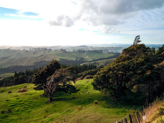 Northland, North Island of New Zealand - Stock Image