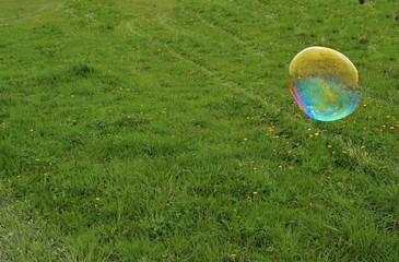Bubble Blowing bubble on meadow.