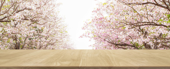 Wood table top and blurred flowers tree in park banner background - can used for display or montage your products.