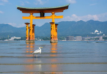 Heron in front of the Floating Tori Gate