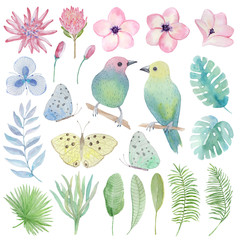 Watercolor set tropical birds, flowers, leaves