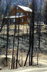 HOME STANDS UNBTOUCHED AMID DESTRUCTION AFTER MANTER FIRE.