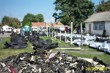 Rows of body bags containing bodies of dead hostages lie in front of a school building in the town ...