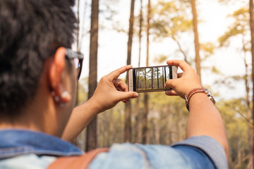 A man taking photo of Pine forest in Thailand with his smartphone.