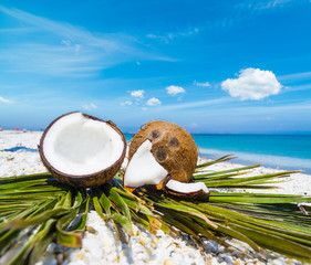 Coconuts halves on palm leaves
