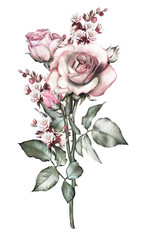 floral illustration - pink rose. branch with spines. flower with leaves isolated on white background. Cute composition for wedding or greeting card. bouquet.