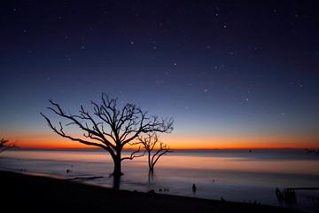Dawn at Botany Bay Wildlife Preserve, SC