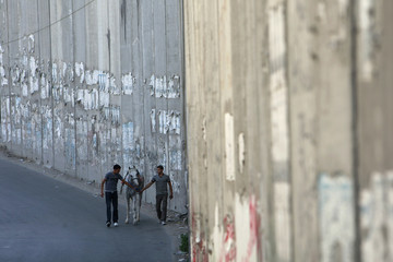 Palestinians walk with horse near controversial Israeli barrier in Abu Dis