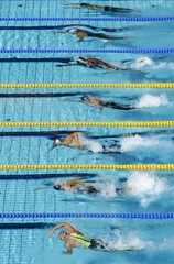Swimmers compete in their men's 50 metres freestyle heat at the Athens 2004 Olympic Games.