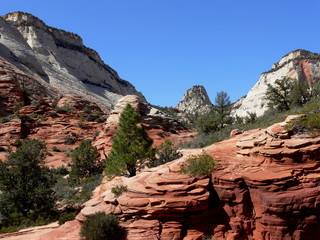 Zion Utah red sandstone formations