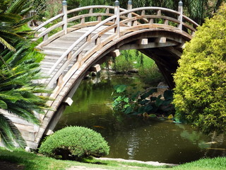 Arched wooden bridge over pond